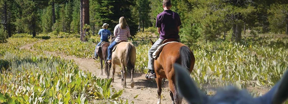 Cowgirls And Cocktails Trail Ride Tahoe Donner