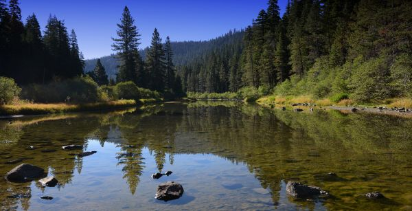 Mountain Hardware & Sports, Truckee Fishing Report - August 1st