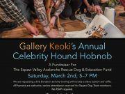 Celebrity Hound Hobnob