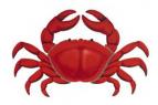 Rotary Club of Truckee, Rotary Crab & Pasta Feed