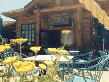 Artemis Lakefront Cafe, Live Music at Artemis Lakefront