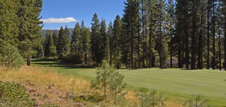 The Golf Courses at Incline Village, Audubon Nature Walk at the Mountain Course