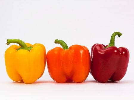 KidZone Museum, Harvest of the Month: Peppers
