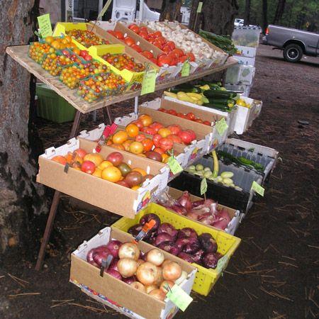 Truckee Events - Do Not Use, Truckee Farmers Market