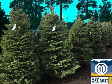 Truckee Optimist Club, Truckee Optimist 2018 Christmas Tree Lot