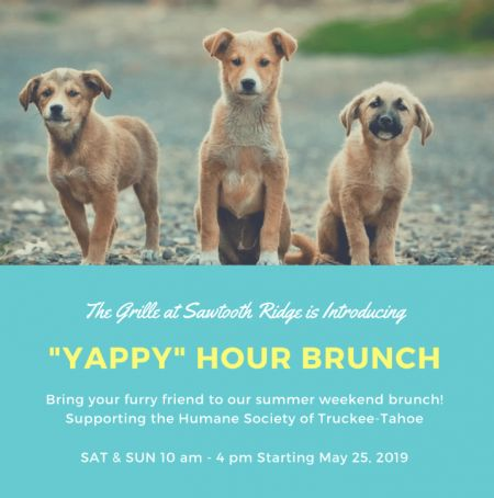 The Grille At Sawtooth Ridge Truckee CA, Brunch for Dog People, supporting the Humane Society of Truckee Tahoe