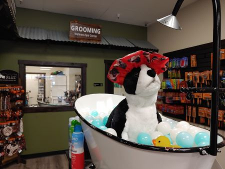 EarthWise Pet, South Lake Tahoe, Pamper Your Pet!