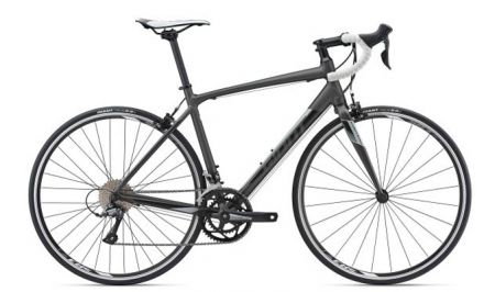 South Shore Bikes, Road Bike Rentals - Giant Contend Alloy
