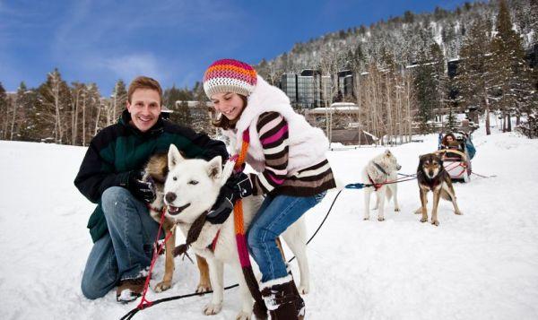 The 5 Best Winter Outdoor Activities to do with Kids ...