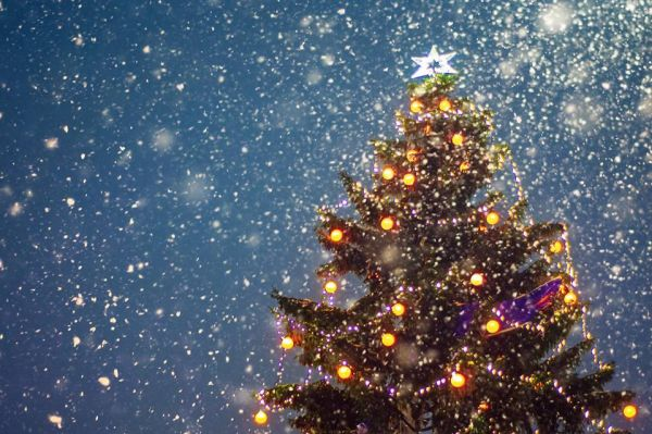 Lake Tahoe Christmas Events 2020 Christmas Tree Lighting Ceremony | Sugar Bowl Resort | Lake Tahoe